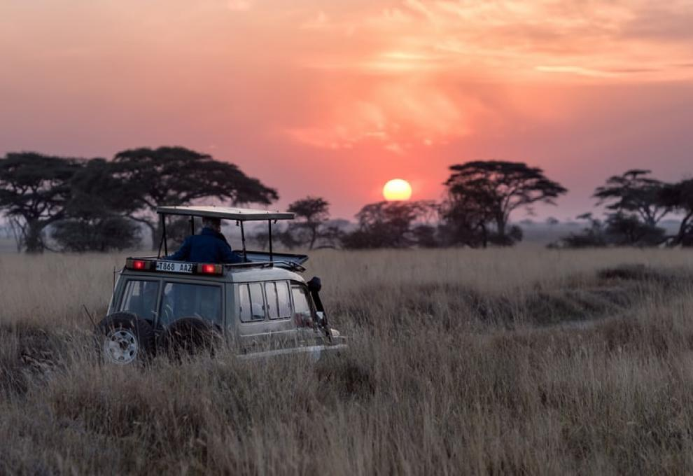 Saving Nature through Travel – Safarisource is on a Mission to bring tourists to Africa